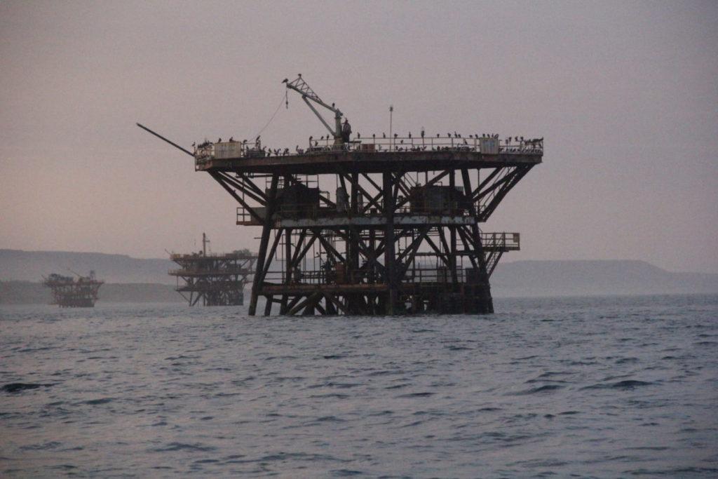 La existencia de cinco lotes petroleros que se superponen al espacio propuesto para la reserva marina ha sido una de las razones por las que esta área ha demorado en aprobarse. Foto: Vanessa Romo