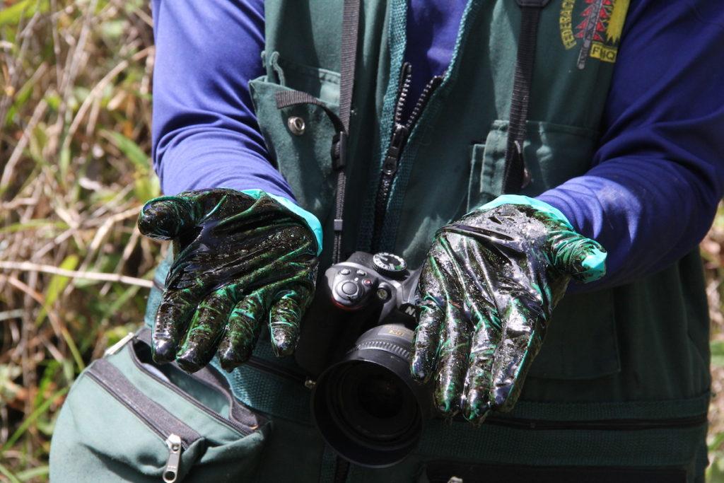 Cada vez que encuentra una evidencia de petróleo, Elmer Hualinga se pone guantes y apoya las manos sobre el crudo para verificar su existencia. Es una de las metodologías que aprendió en las capacitaciones a los monitores. Foto: Vanessa Romo Espinoza.