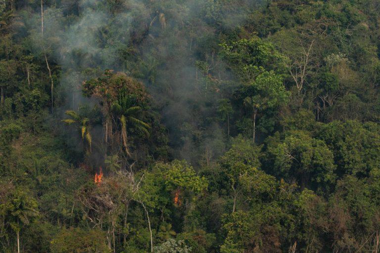 Altamira, Para, Brasil. Incendio en Cerra do Cachimbo REBIO. Foto: Victor Moriyama/Greenpeace.