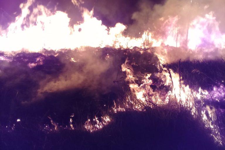 Un pastizal de Roboré, en Bolivia, consumido por el fuego. Foto: Gerson Bravo, bombero voluntario.