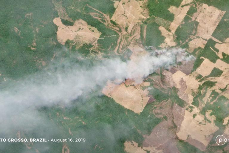 La constelación de satélites de Planet vuela casi a diario y cuenta con alta resolución, así que ofrece imágenes claras de algunos de los incendios que quemaron la Amazonía brasileña. Imágenes satelitales de incendios forestales en Mato Grosso, Brasil. Imagen de Planet Labs Inc.