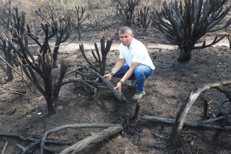 Así quedó parte del terreno quemado. Foto: Cormacarena.