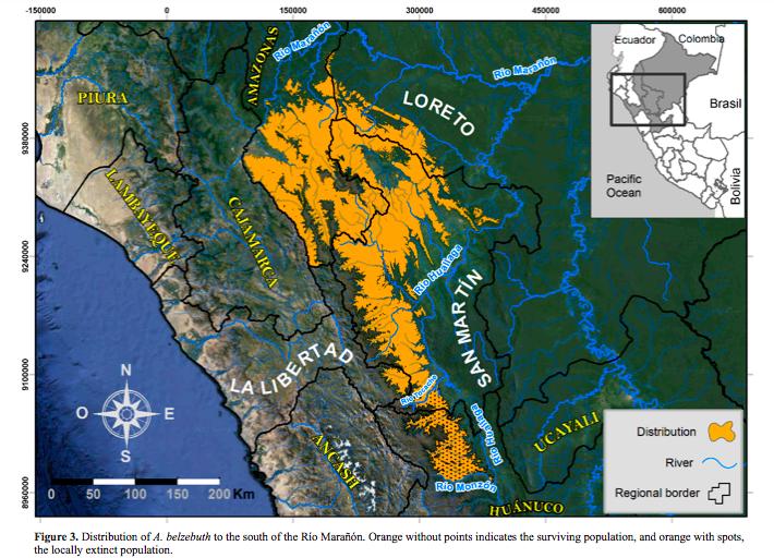 Mapa de distribución del Ateles belzebuth en Perú. Fuente: Rolando Aquino.