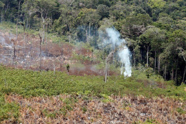 Aún se ve humo saliendo de la tierra incendiada. Foto: Ministerio de Ambiente.