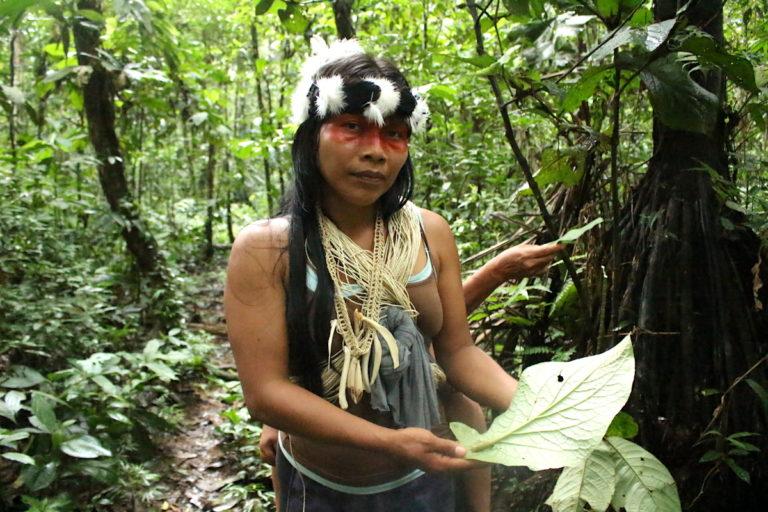 En Ecuador no existen protocolos específicos para los pueblos indígenas en situaciones como la que Foto: Daniela Aguilar.