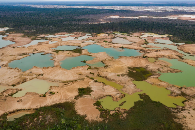 Más de cinco mil hectáreas de bosques han desaparecido por presencia de pozas de minería ilegal. Foto: Jason Houston / CINCIA WFU.