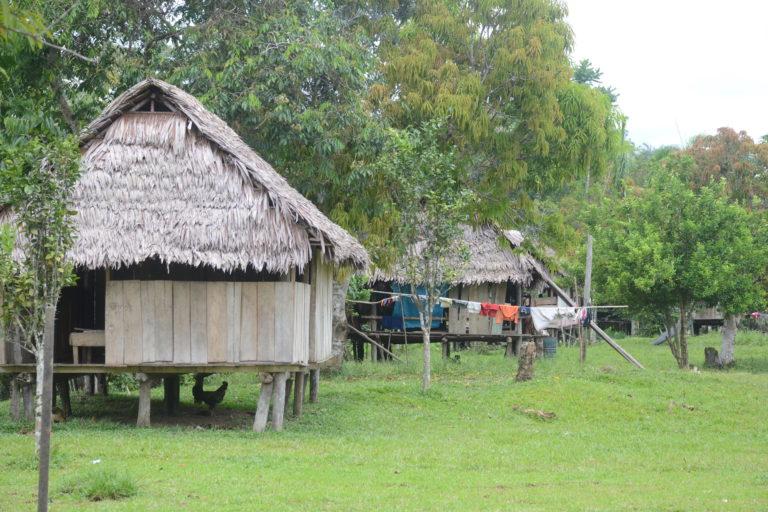 Los pueblos indígenas son altamente vulnerables a las enfermedades infecto-contagiosas. Foto: Yvette Sierra Praeli.