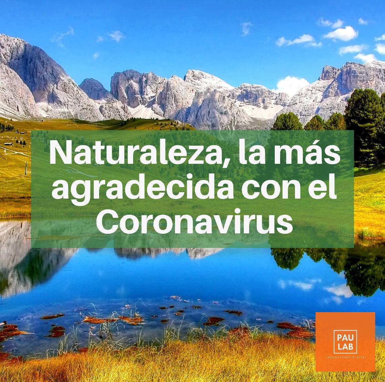 Naturaleza, la más agradecida con el Coronavirus