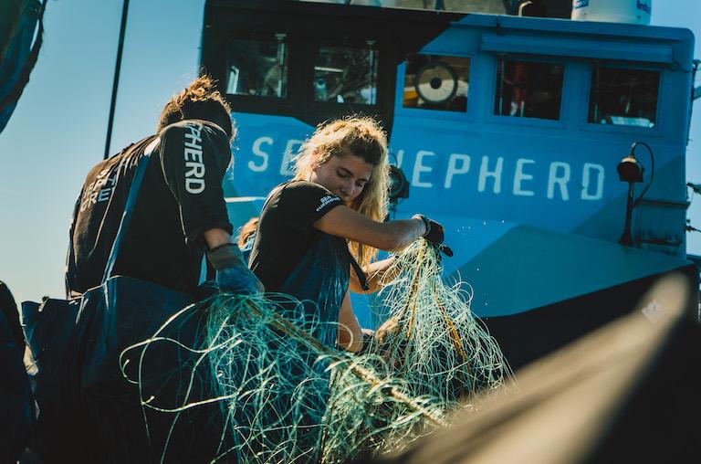 Los miembros de la tripulación de Sea Shepherd retiran trasmallos ilegales en el alto golfo de California. Foto de Robbie Newby/Sea Shepherd.
