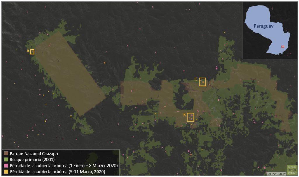 Mapa satelital del Parque Caazapá con focos de deforestación. Global Forest Watch