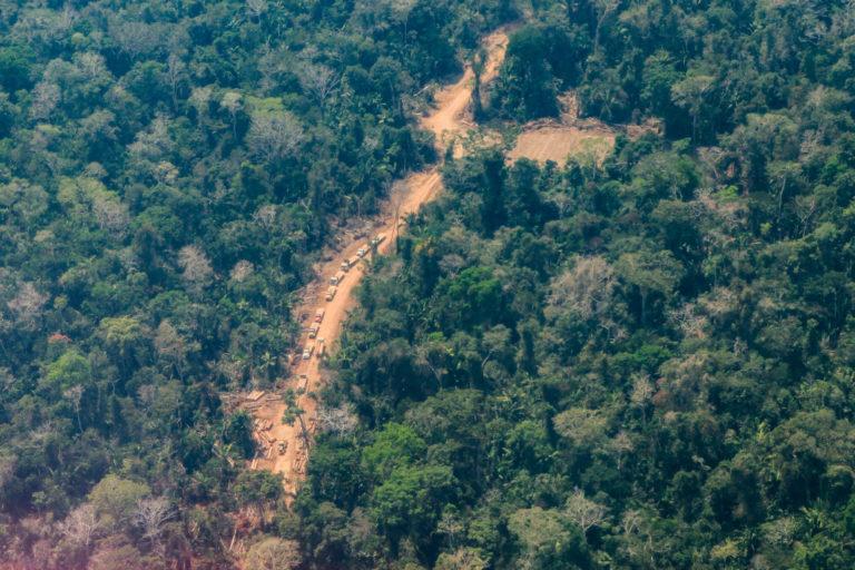 Camiones trasladando madera en medio de la Amazonía. Foto: Environmental Investigation Agency (EIA)