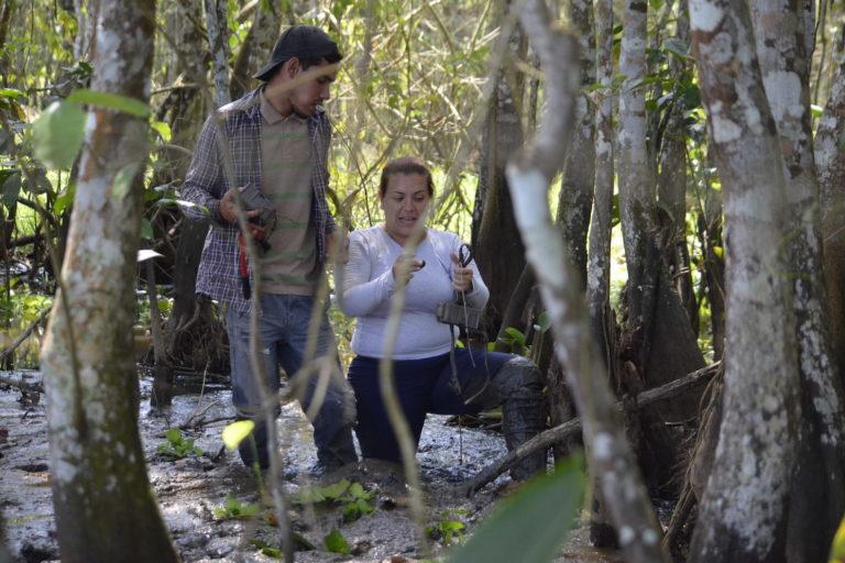 En la imagen, María Fernanda Puerto instala cámaras trampa al sur del lago de Maracaibo, en Zulia, Venezuela. Foto: Pedro Luis Bermúdez