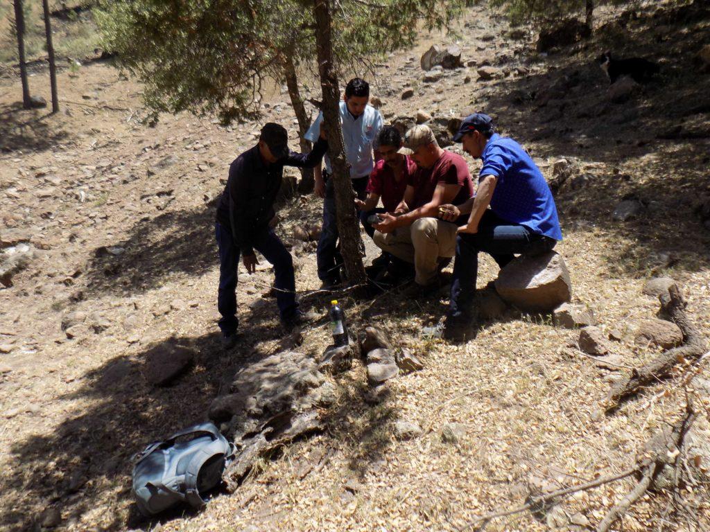 Ejidatarios de El Largo y personal de la Conanp instalan cámaras trampa para el monitoreo del oso. Foto: APFF Campo Verde/CONANP