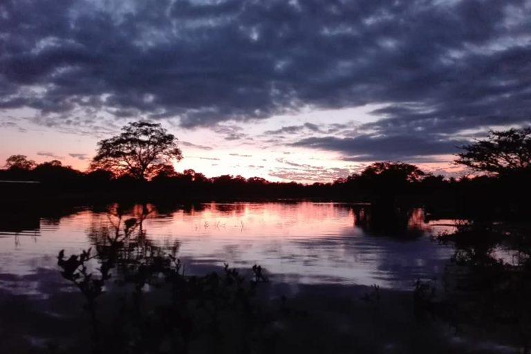 El Parque Nacional Madidi es uno de los más biodiversos del planeta. Foto: Radamir Sevillano.