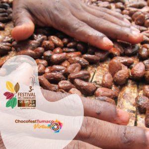 Cacao del Pacífico nariñense.